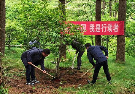 生态环境志愿服务行动纲领.jpeg