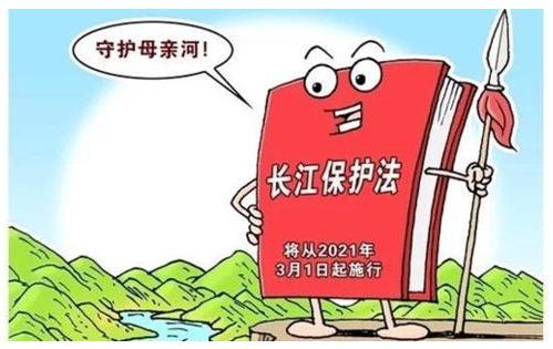 长江保护法.png